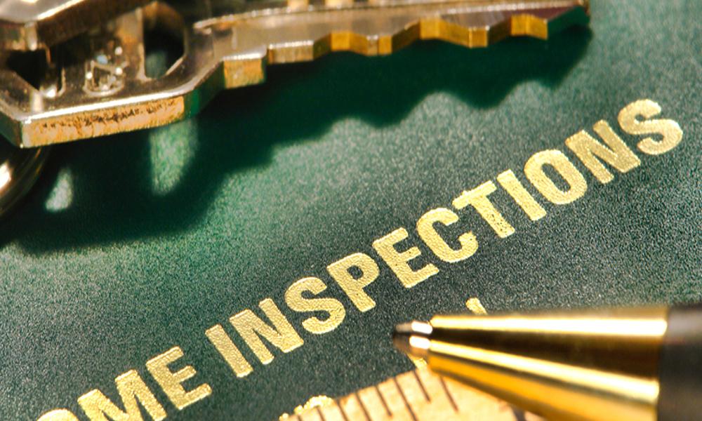 Invasive Inspections 3