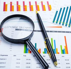 Business Diagnostic Reviews