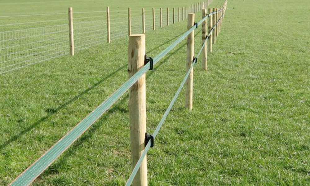 Electric Fencing 4