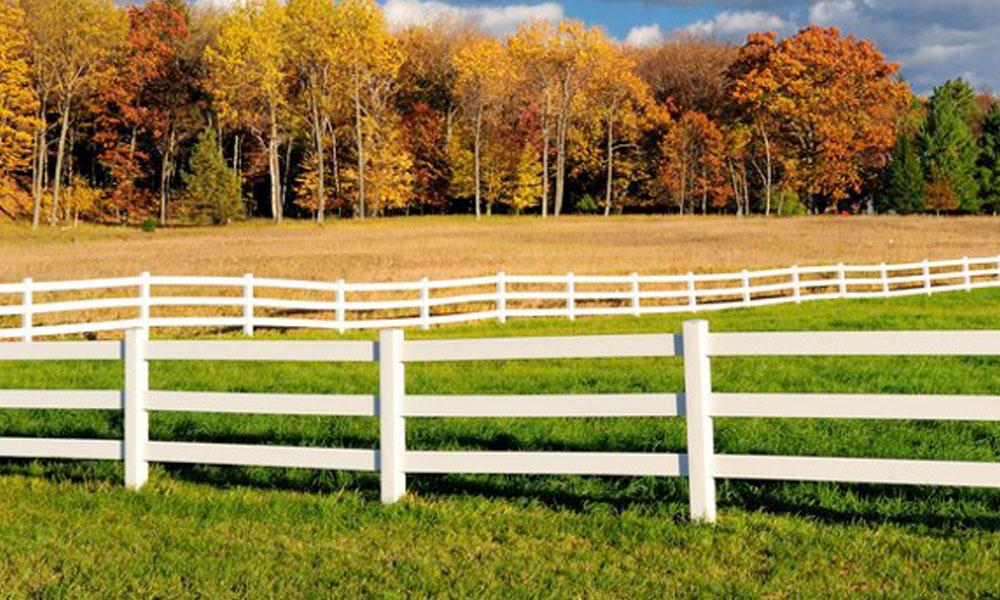 Farm Fencing 10