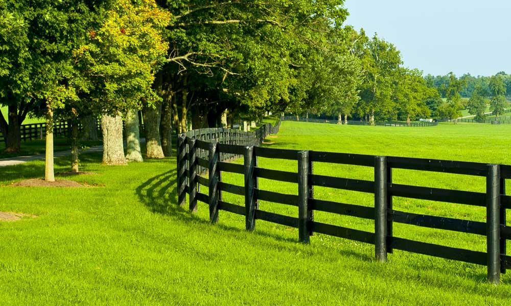 Rural Fencing 3