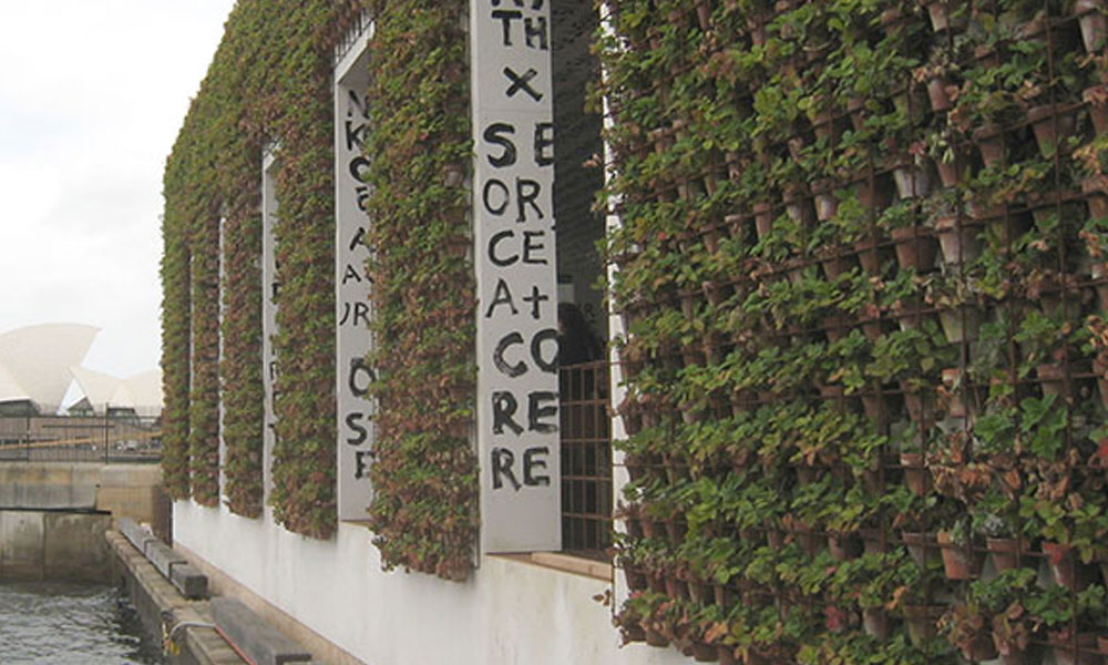 Commercial Landscaping 6