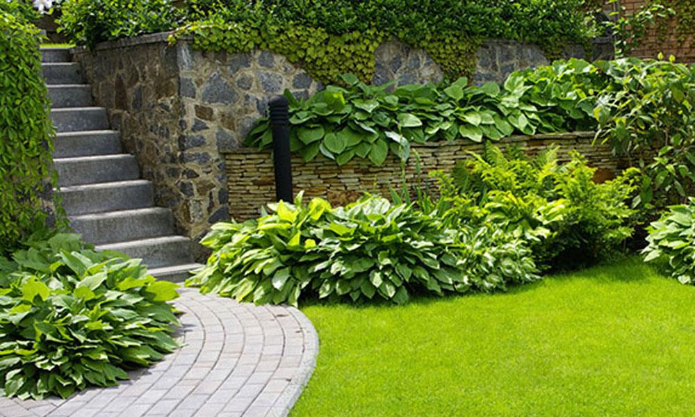 Formal Gardens 1