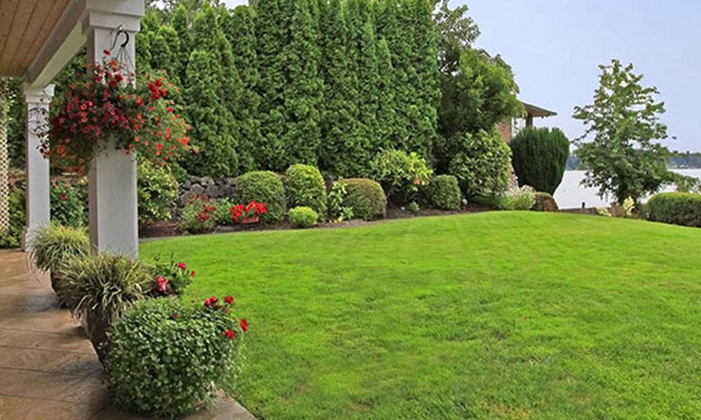 Formal Gardens 7