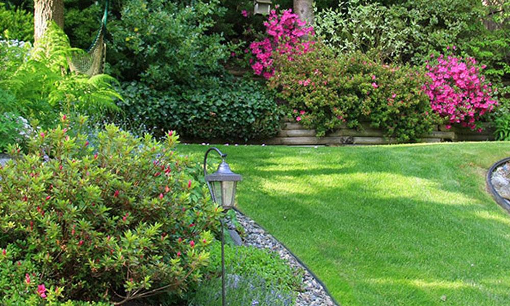 Formal Gardens 8