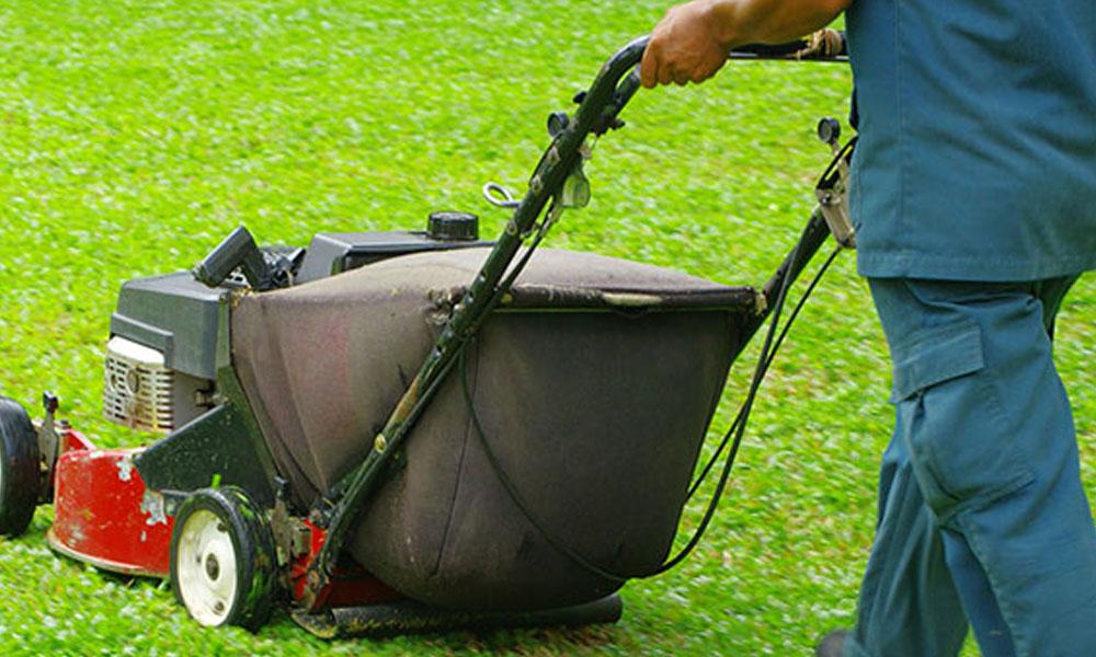Garden Maintenance 8