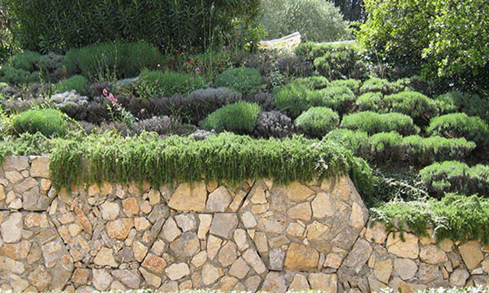 Landscape Walls 5
