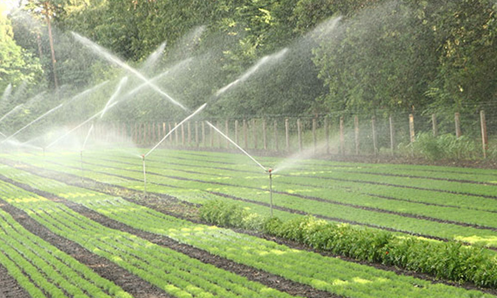 Landscaping Irrigations 8