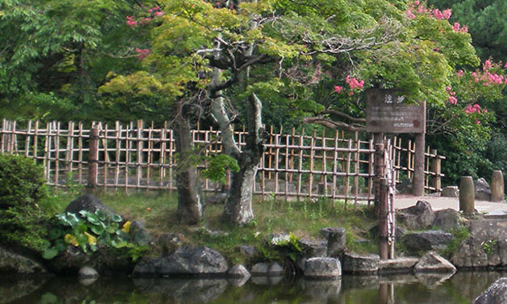 Oriental, Japanese and Zen Gardens 6