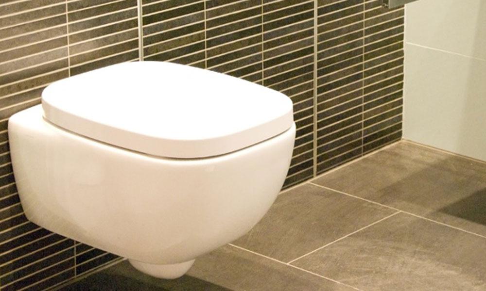Toilet Repairs 5