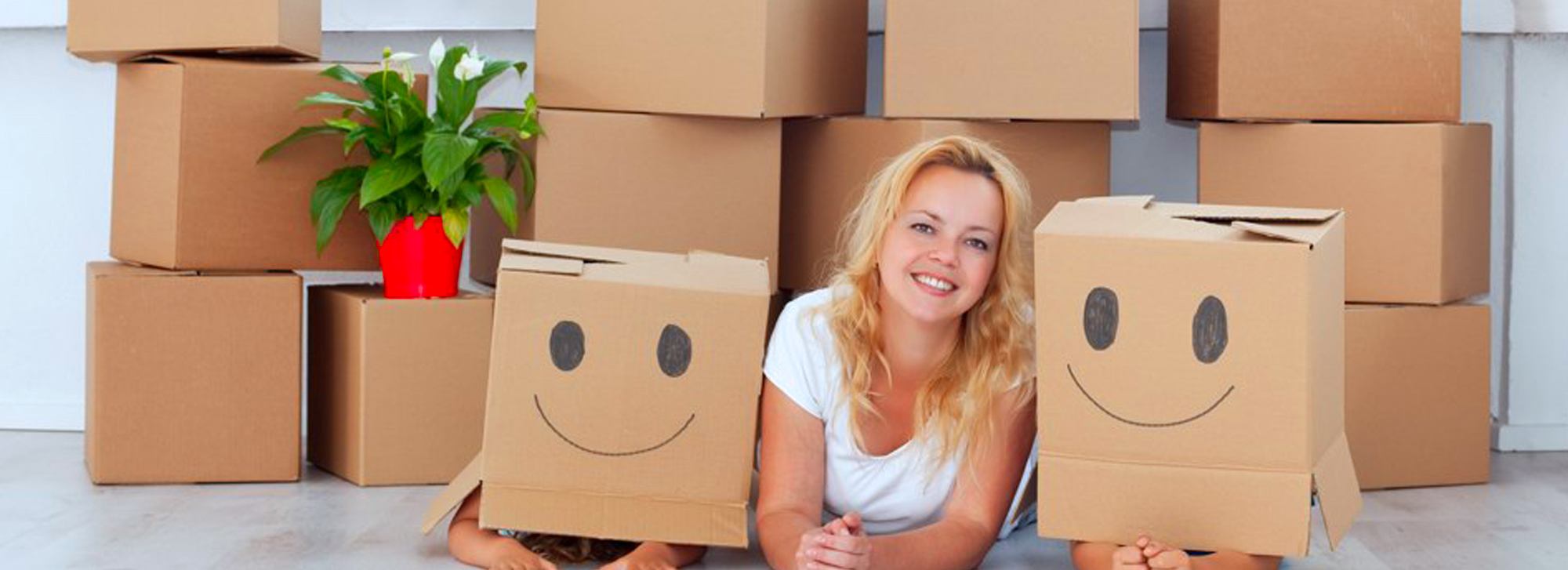 Removalists 6